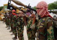 Somalie : des militaires américains pour aider les forces locales à combattre les Shebab