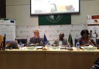 Addis-Abeba : Lancement d'un appel à propositions pour la surveillance de l'environnement