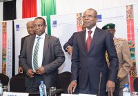 Les pays africains attirés par le succès de l'Assurance du Commerce en Afrique