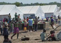 Ouganda: La FAO en soutien aux réfugiés