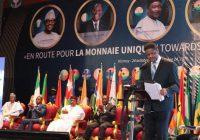 CEDEAO : Pas prête pour la monnaie unique en 2020
