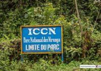 RDC :  Pose de la clôture électrique du Parc national des Virunga