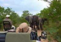 L'Afrique est désormais la destination touristique de 10% des Chinois