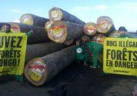 RDC : Greenpeace contre l'exploitation forestière dans trois provinces