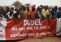 Sénégal : Les populations de Dodel et Demette mobilisées contre l'expropriation de leurs terres
