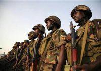 RDC : L'armée ougandaise affirme avoir tué une centaine de rebelles au Nord Kivu