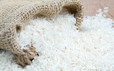 La Tanzanie pourrait exporter 144 000 T. de riz vers le Rwanda et le Kenya cette saison